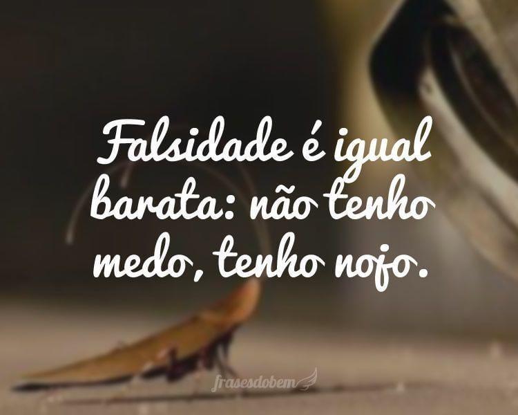 Falsidade é igual barata: não tenho medo, tenho nojo.