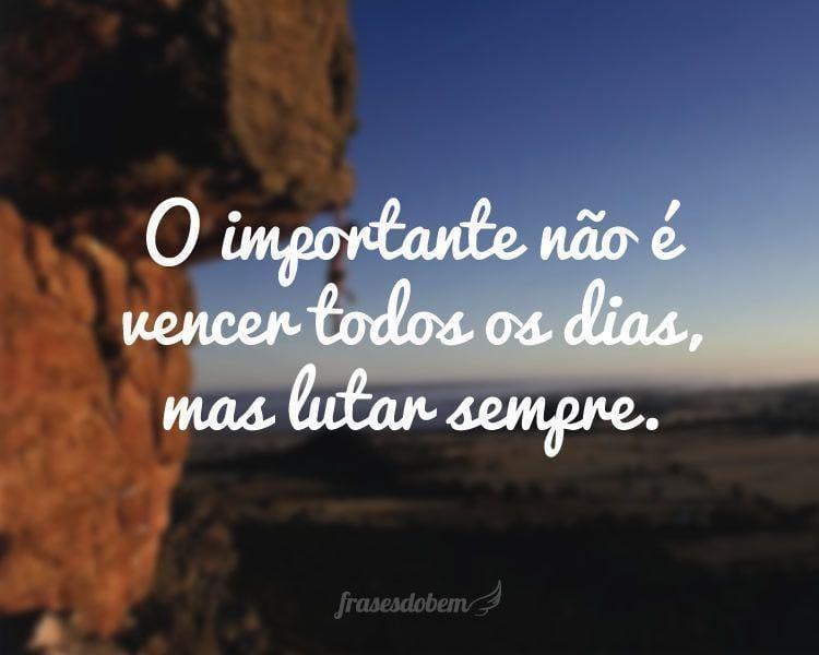 O importante não é vencer todos os dias, mas lutar sempre.