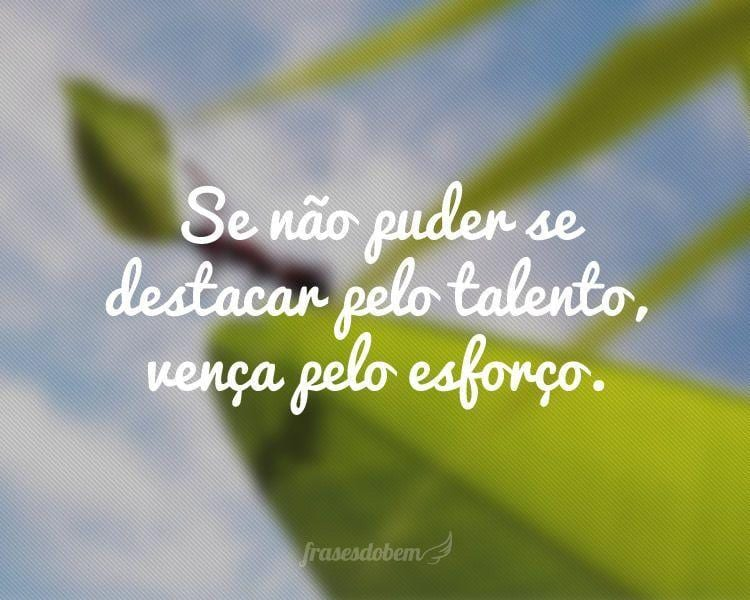 Se não puder se destacar pelo talento, vença pelo esforço.