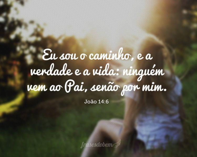 Eu sou o caminho, e a verdade e a vida: ninguém vem ao Pai, senão por mim. (João 14:6)