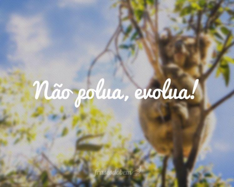 Não polua, evolua!