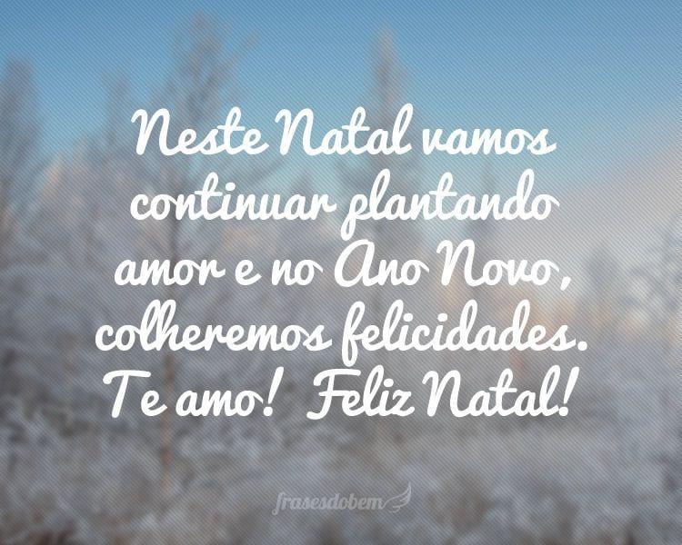 Neste Natal vamos continuar plantando amor e no Ano Novo, colheremos felicidades. Te amo! Feliz Natal!