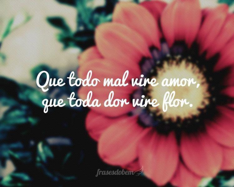 Que todo mal vire amor, que toda dor vire flor.