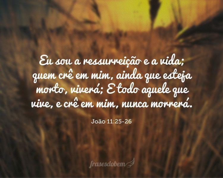 Eu sou a ressurreição e a vida; quem crê em mim, ainda que esteja morto, viverá; E todo aquele que vive, e crê em mim, nunca morrerá. (João 11:25-26)