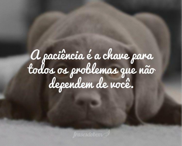 A paciência é a chave para todos os problemas que não dependem de você.