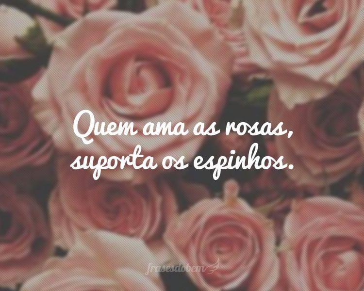 Quem ama as rosas, suporta os espinhos.