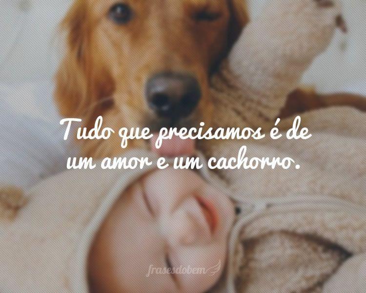 Tudo Que Precisamos é De Um Amor E Um Cachorro