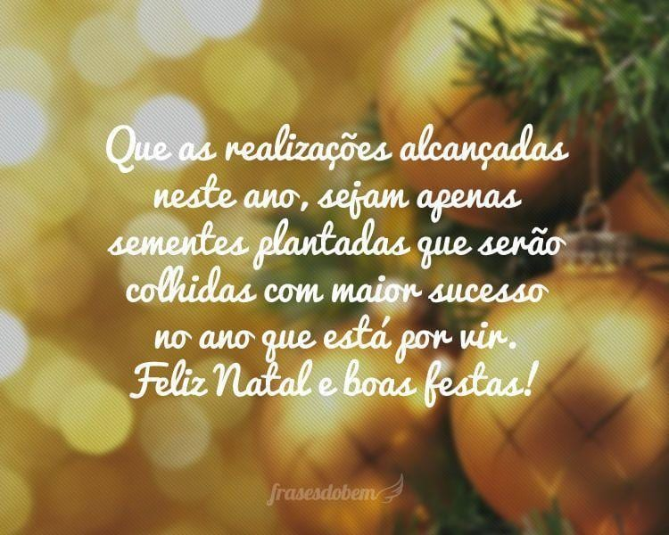 Que as realizações alcançadas neste ano, sejam apenas sementes plantadas que serão colhidas com maior sucesso no ano que está por vir. Feliz Natal e boas festas!