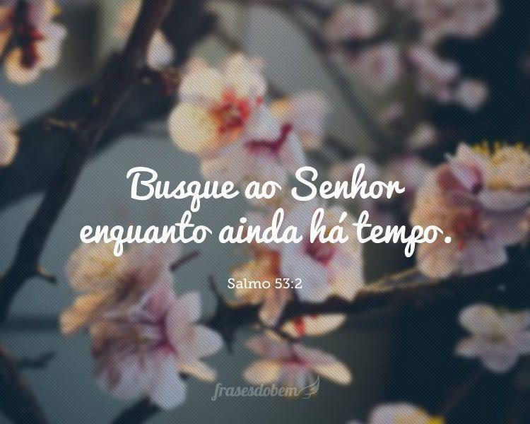 Busque ao Senhor enquanto ainda há tempo. (Salmo 53:2)