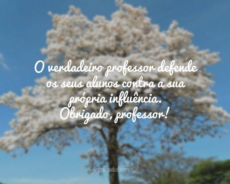 O verdadeiro professor defende os seus alunos contra a sua própria influência. Obrigado, professor!