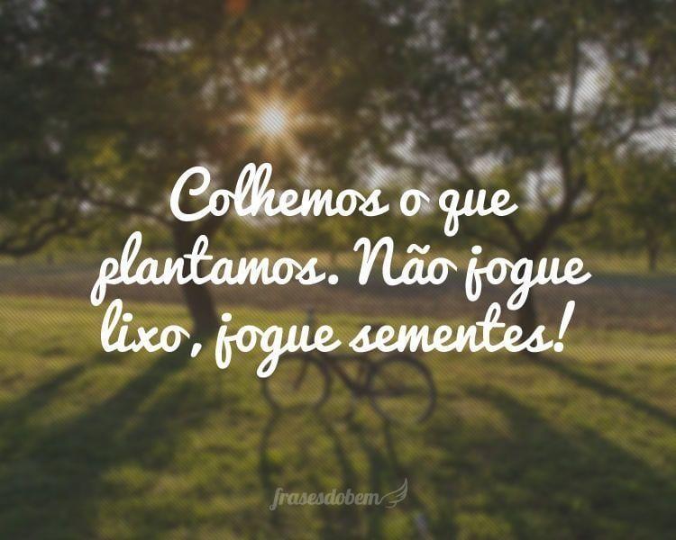 Colhemos o que plantamos. Não jogue lixo, jogue sementes!