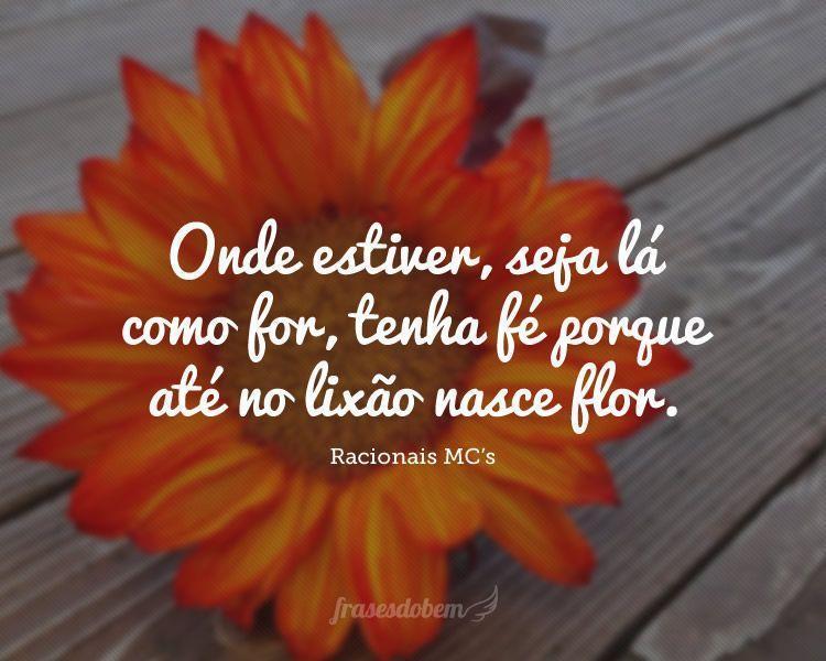 Onde estiver, seja lá como for, tenha fé porque até no lixão nasce flor.