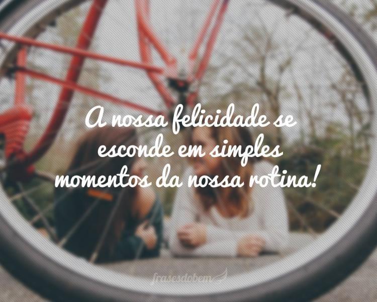A nossa felicidade se esconde em simples momentos da nossa rotina!