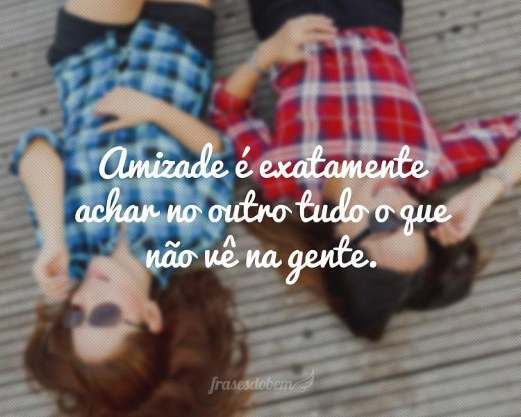 Amizade é exatamente achar no outro tudo o que não vê na gente.