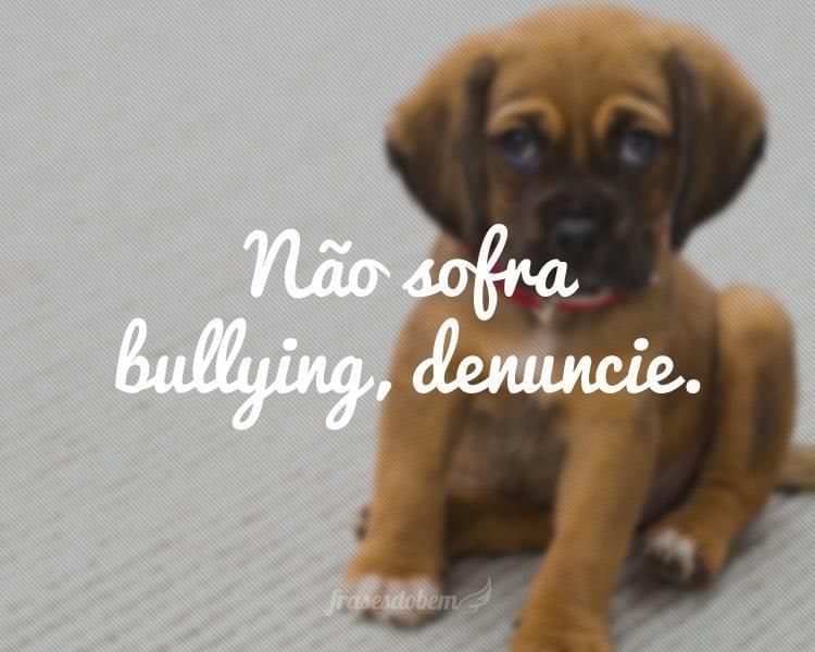 Não sofra bullying, denuncie.
