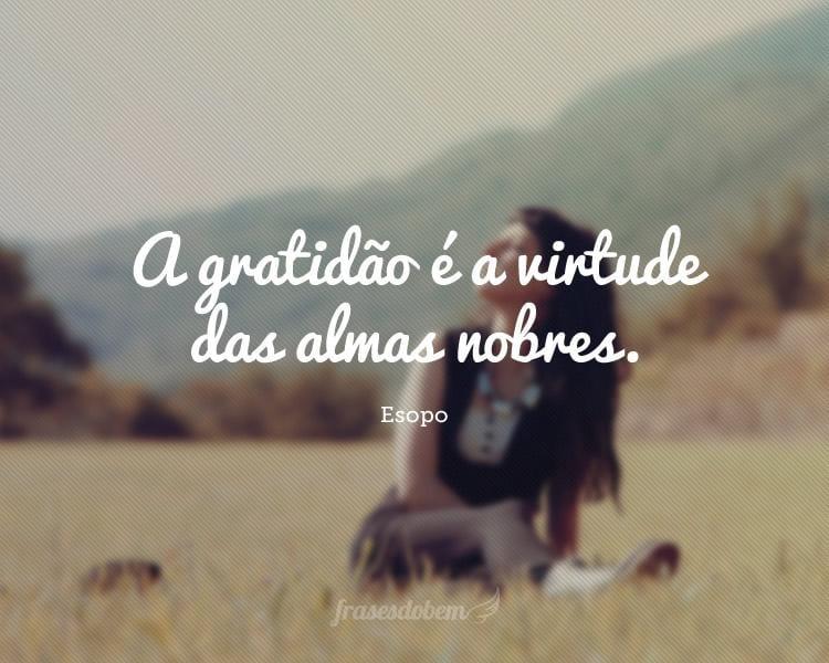 A gratidão é a virtude das almas nobres.