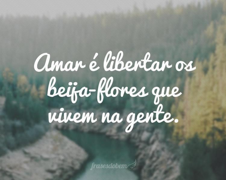 Amar é libertar os beija-flores que vivem na gente.