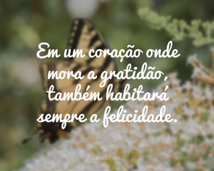 Em um coração onde mora a gratidão, também habitará sempre a felicidade.