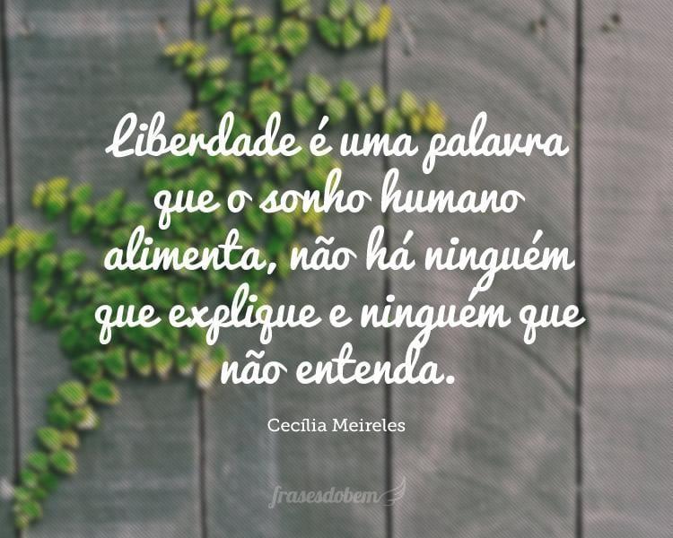 Liberdade é uma palavra que o sonho humano alimenta, não há ninguém que explique e ninguém que não entenda.