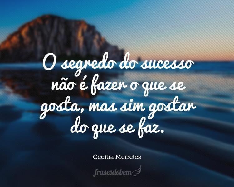 O segredo do sucesso não é fazer o que se gosta, mas sim gostar do que se faz.