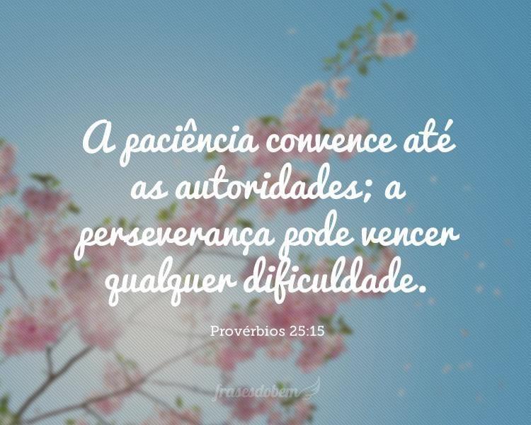 A paciência convence até as autoridades; a perseverança pode vencer qualquer dificuldade. Provérbios 25:15