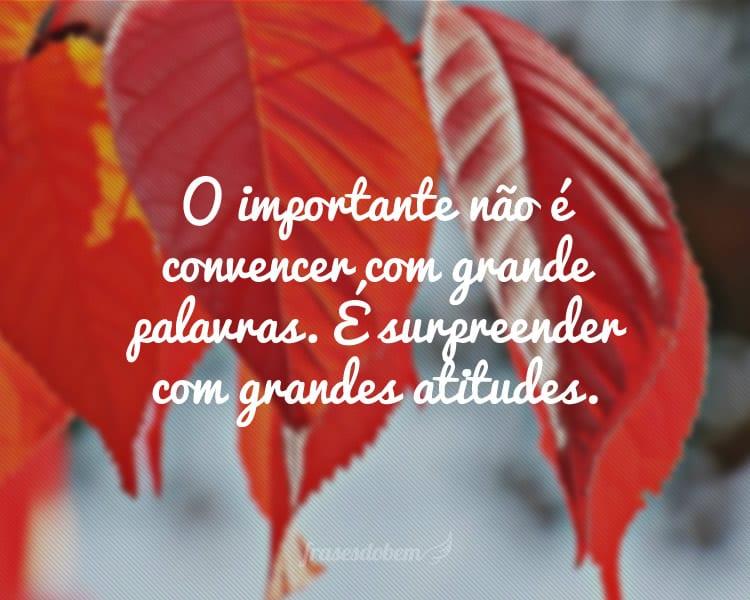 O importante não é convencer com grande palavras. É surpreender com grandes atitudes.