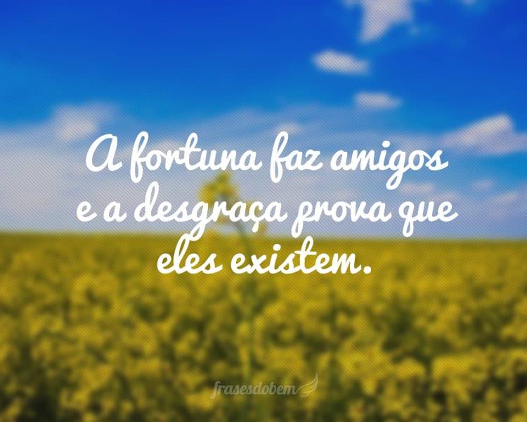 A fortuna faz amigos e a desgraça prova que eles existem.