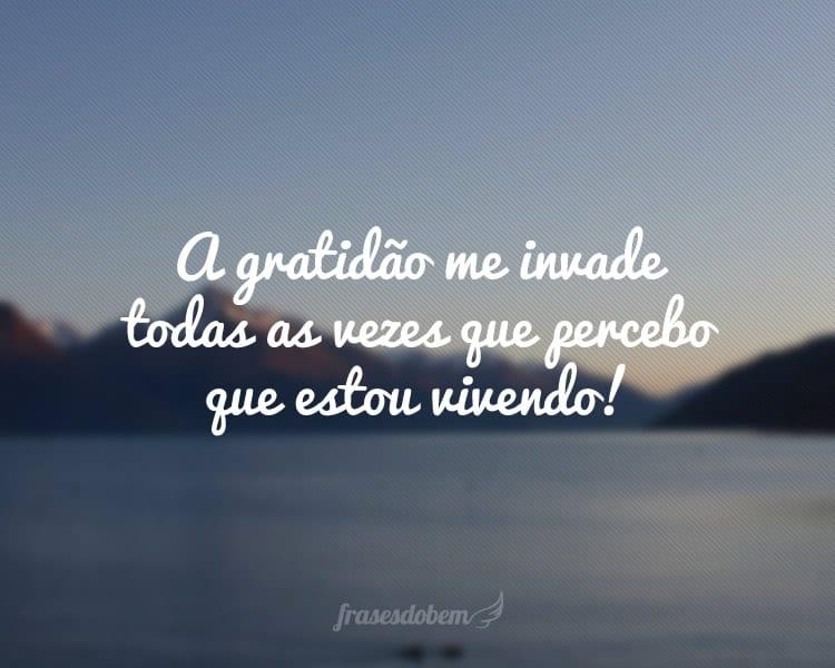 A gratidão me invade todas as vezes que percebo que estou vivendo!