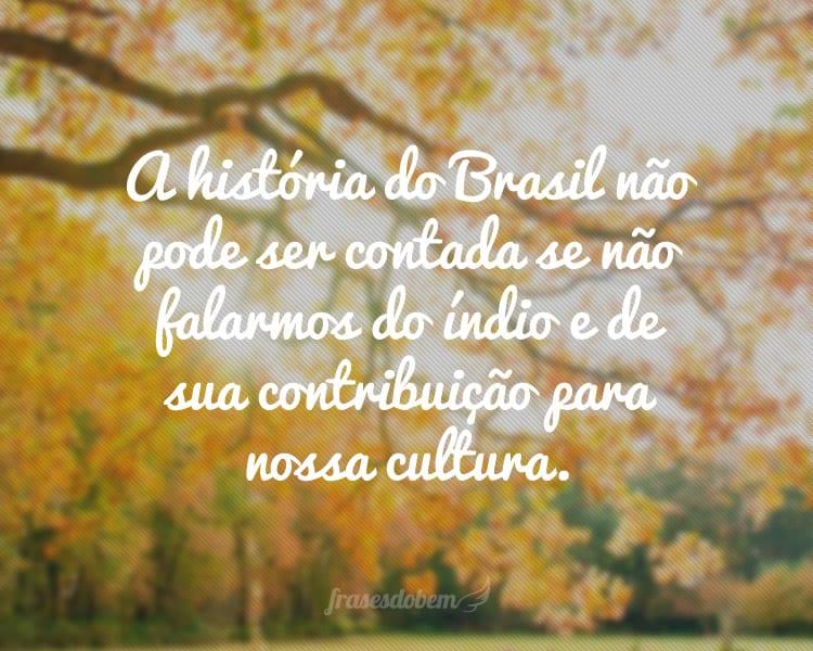 A história do Brasil não pode ser contada se não falarmos do índio e de sua contribuição para nossa cultura.