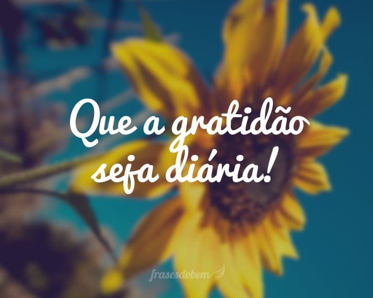 Que a gratidão seja diária!