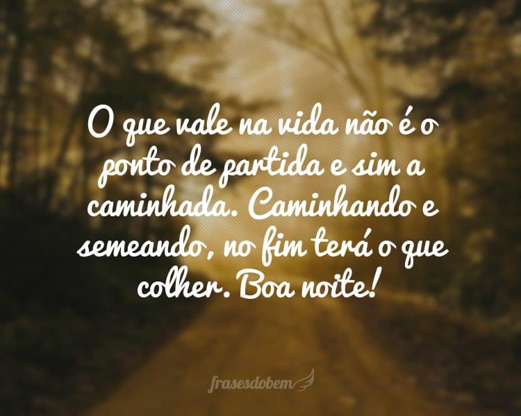 O que vale na vida não é o ponto de partida e sim a caminhada. Caminhando e semeando, no fim teremos o que colher. Boa noite!