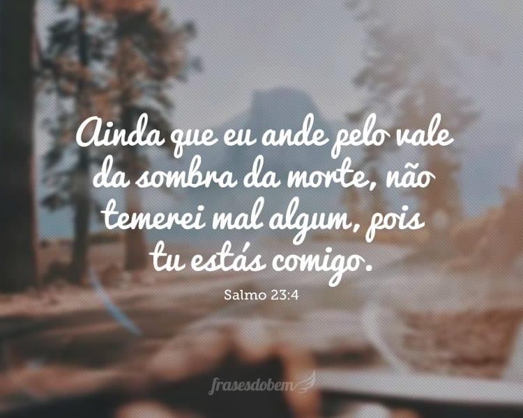 Ainda que eu ande pelo vale da sombra da morte, não temerei mal algum, pois tu estás comigo. Salmo 23:4