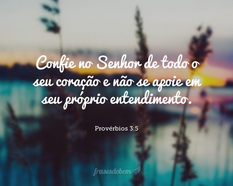 Confie no Senhor de todo o seu coração e não se apoie em seu próprio entendimento. Provérbios 3:5