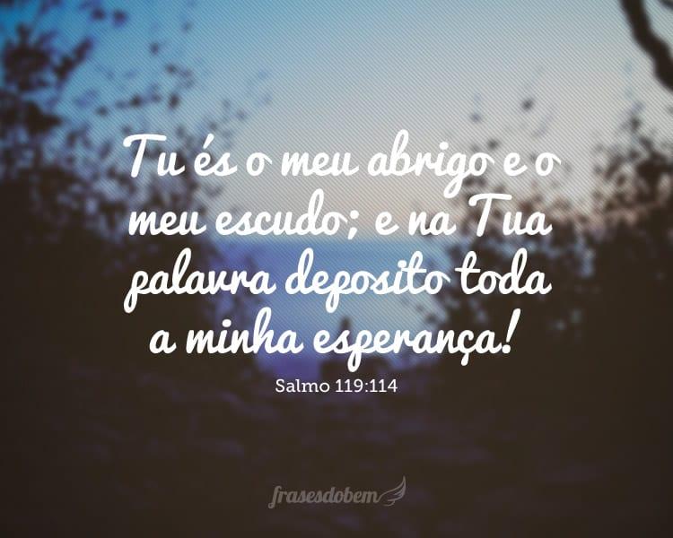Tu és o meu abrigo e o meu escudo; e na Tua palavra deposito toda a minha esperança! Salmo 119:114