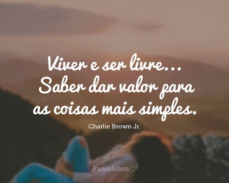 Viver e ser livre... Saber dar valor para as coisas mais simples.