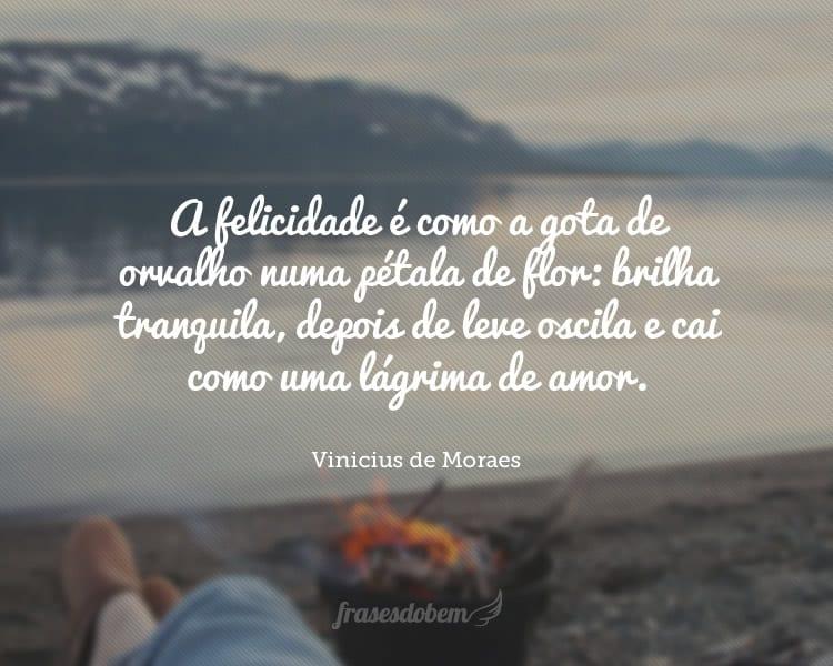 A felicidade é como a gota de orvalho numa pétala de flor: brilha tranquila, depois de leve oscila e cai como uma lágrima de amor.