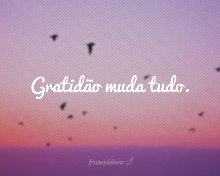 Gratidão muda tudo.