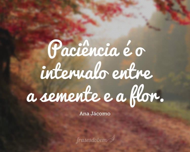 Paciência é o intervalo entre a semente e a flor.