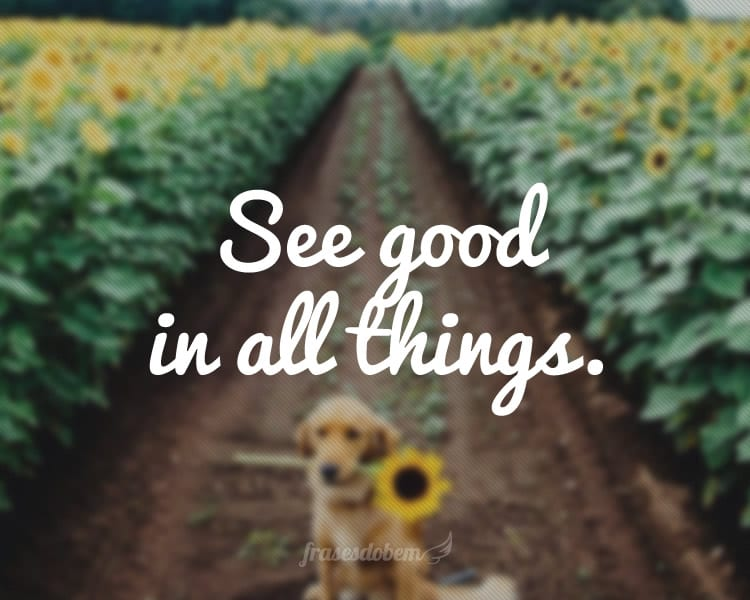 See good in all things.