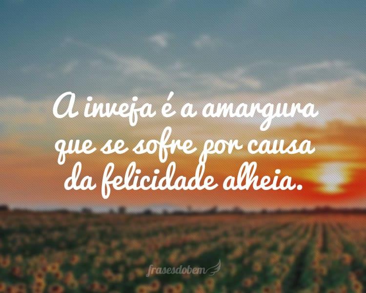 A inveja é a amargura que se sofre por causa da felicidade alheia.
