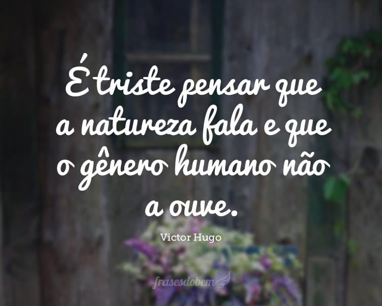 Frases De Victor Hugo Sobre El Amor Kerja Kosr