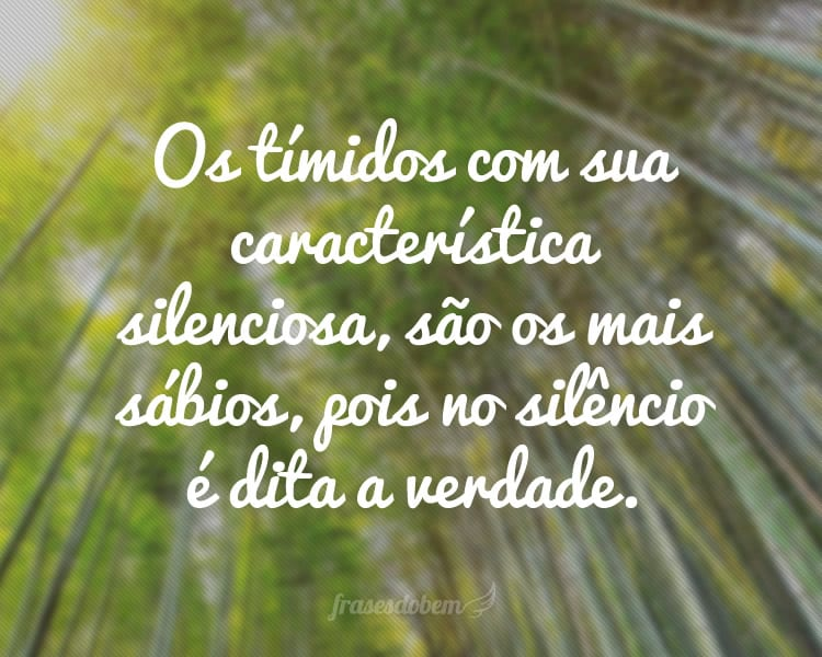 Os tímidos com sua característica silenciosa, são os mais sábios, pois no silêncio é dita a verdade.