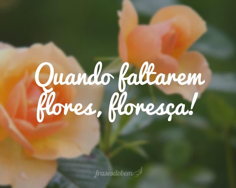Quando faltarem flores, floresça!