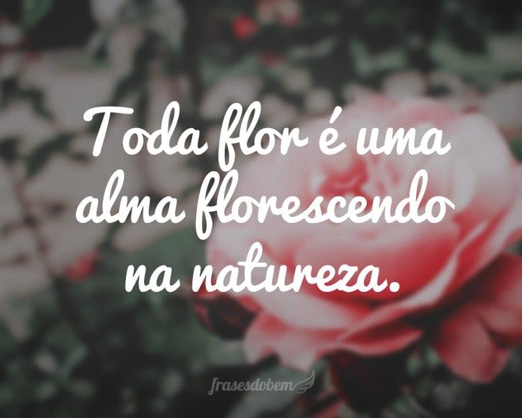 Toda flor é uma alma florescendo na natureza.
