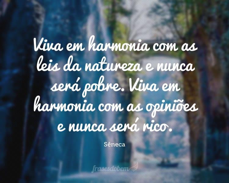 Viva em harmonia com as leis da natureza e nunca será pobre. Viva em harmonia com as opiniões e nunca será rico.