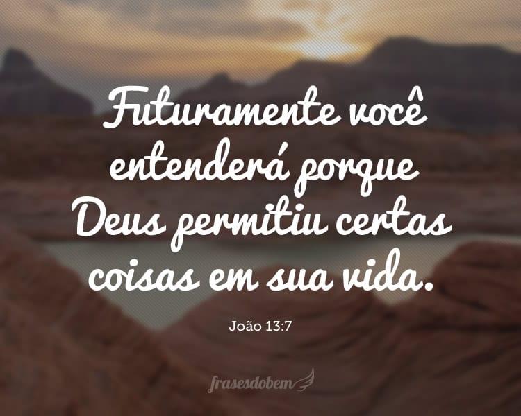 Futuramente você entenderá porque Deus permitiu certas coisas em sua vida. (João 13:7)