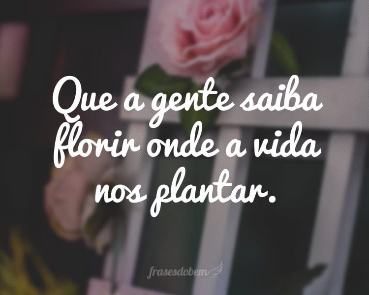 Que a gente saiba florir onde a vida nos plantar.