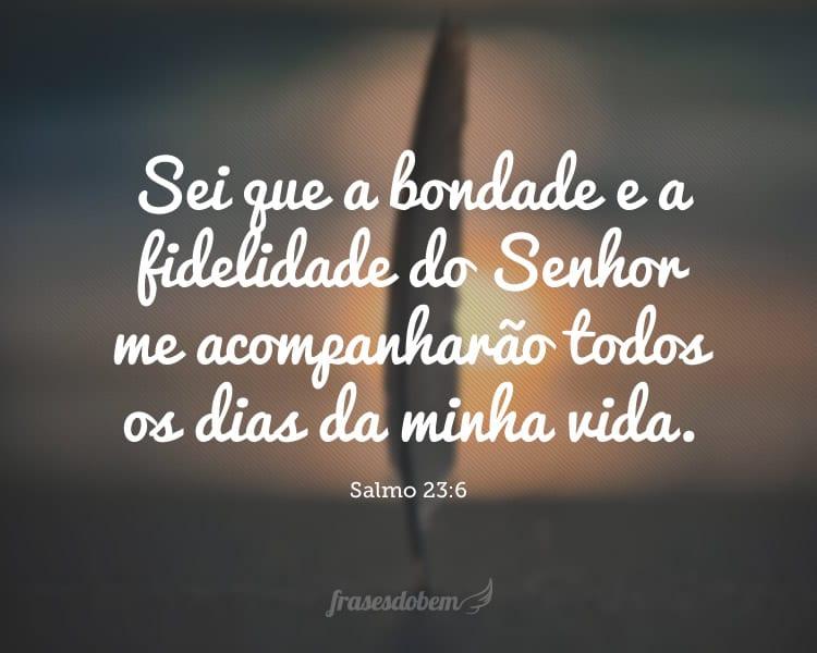 Sei que a bondade e a fidelidade do Senhor me acompanharão todos os dias da minha vida. (Salmo 23:6)