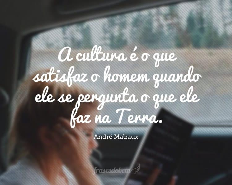 A cultura é o que satisfaz o homem quando ele se pergunta o que ele faz na Terra.