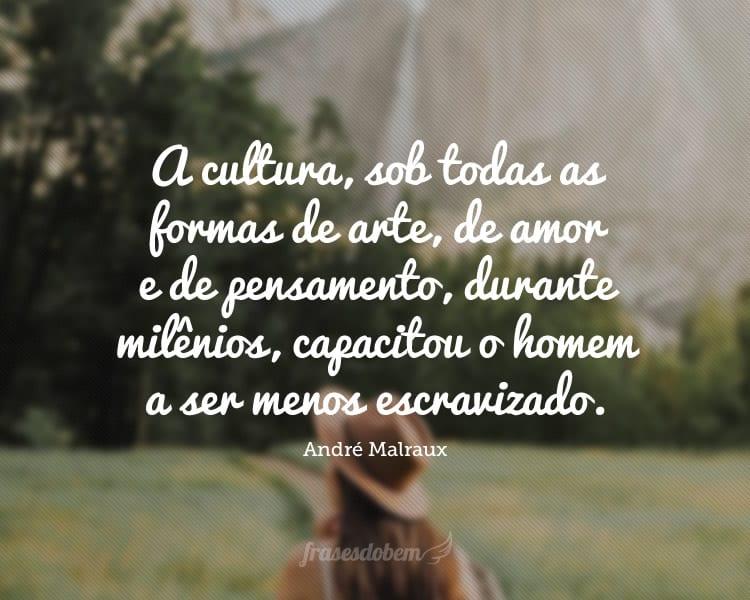 A cultura, sob todas as formas de arte, de amor e de pensamento, durante milênios, capacitou o homem a ser menos escravizado.